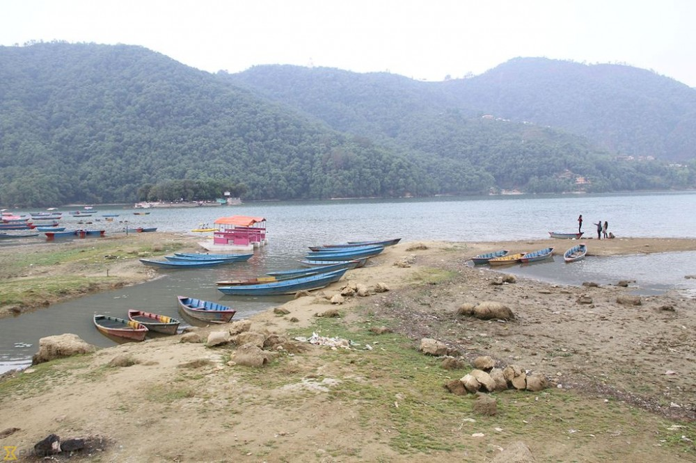 Water level at Fewa lake recedes owing to drought (Photo feature)