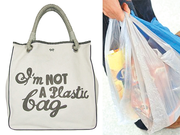 essay on plastic bags should not be banned On the other hand, the same plastic bags have contributed to large environmental pollution effects in the environment that they are used this will form the basis of the discussion.