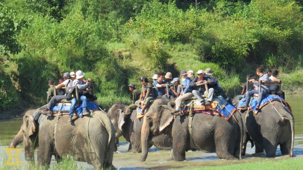 Tourist arrivals to Chitwan reach all-time high of 185,644