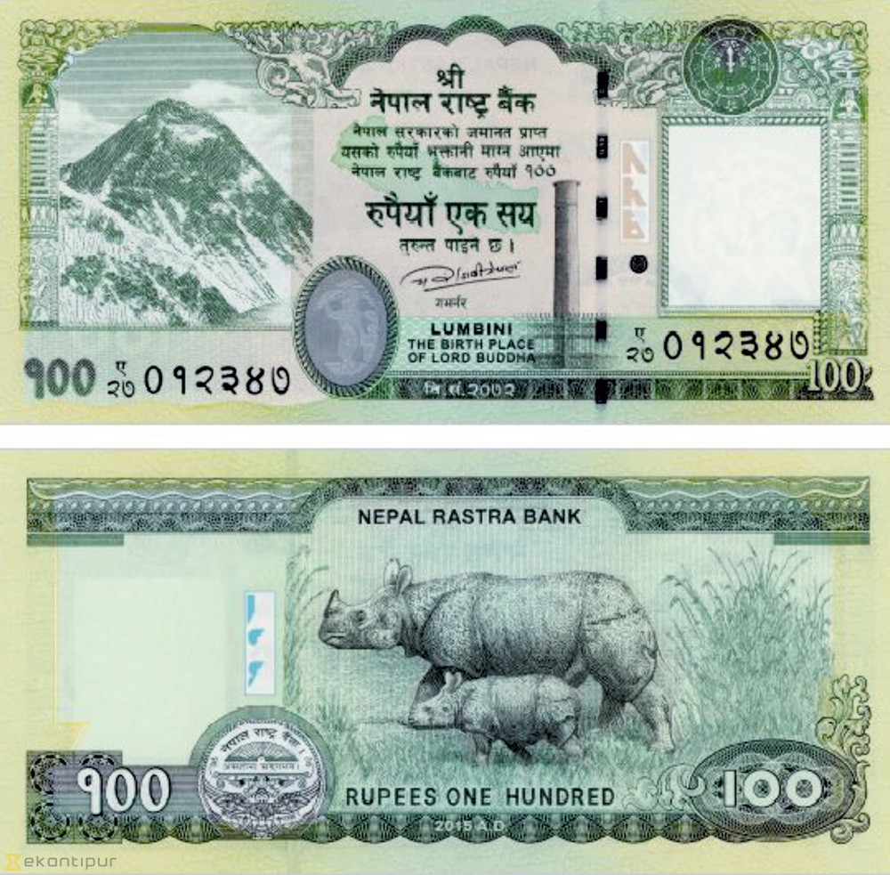 Blind-friendly Rs100 banknote issued