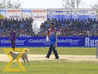 A dog interrupts the Dhangadhi Premier League final match between CYC Attariya and Mahendranagar Untied at Fapla Cricket Ground in Dhangadhi on Saturday.
