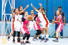 National Basketball League: Convincing victories for Gorillas, Police